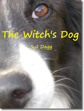 The Witch's Dog by Stephanie Dagg