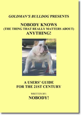 Nobody Knows (The Thing That Really Matters About) Anything! by Raoul Mazzoni / Nobody! (pen name / character)