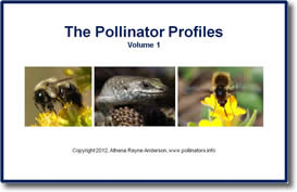 The Pollinator Profiles: Volume 1 by Athena Rayne Anderson