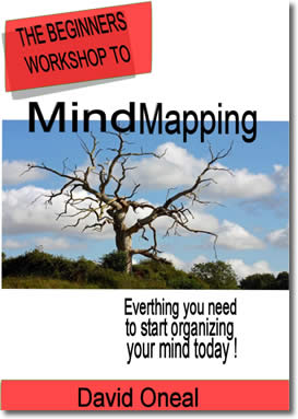 The Beginners Workshop To Mind Mapping by David oneal